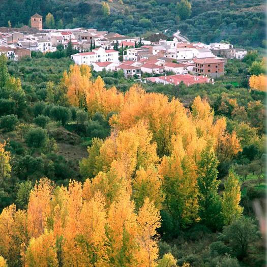 Las Alpujarras y el Valle de Lecrín